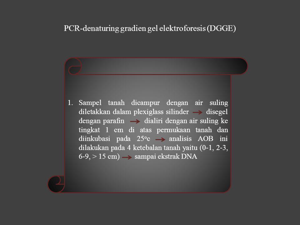 PCR-denaturing gradien gel elektroforesis (DGGE) 1.Sampel tanah dicampur dengan air suling diletakkan dalam plexiglass silinder disegel dengan parafin