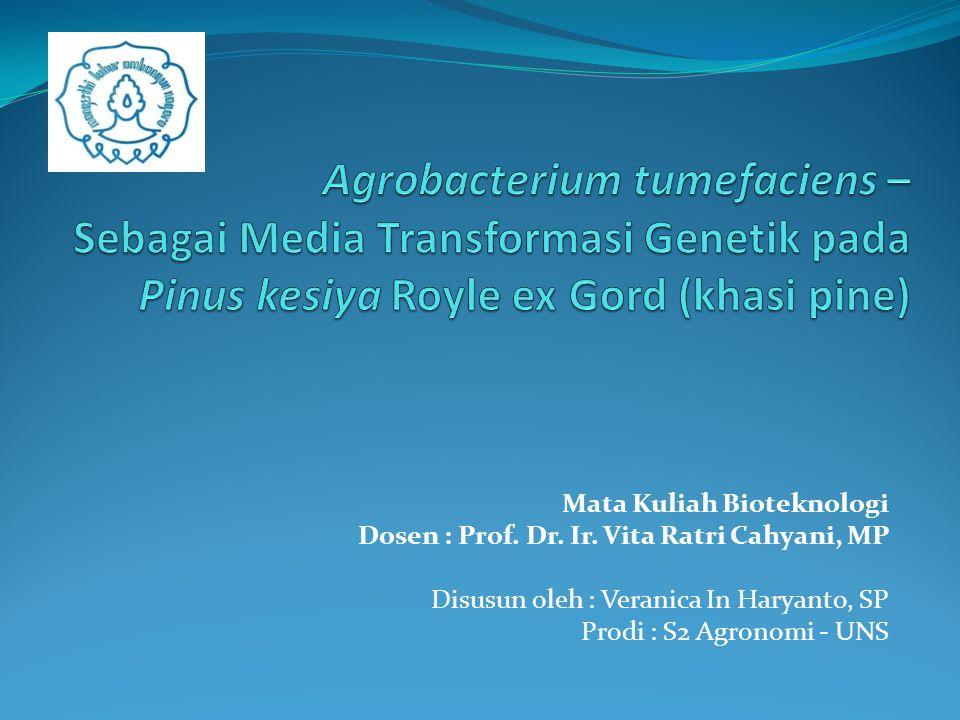 Mata Kuliah Bioteknologi Dosen : Prof. Dr. Ir. Vita Ratri Cahyani, MP Disusun oleh : Veranica In Haryanto, SP Prodi : S2 Agronomi - UNS