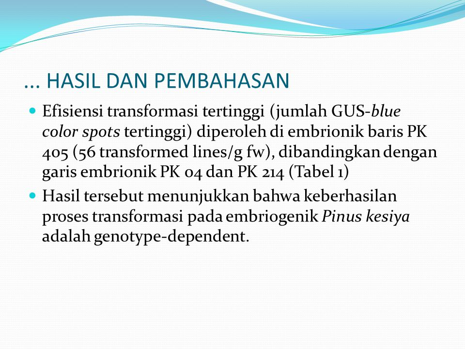 Efisiensi transformasi tertinggi (jumlah GUS-blue color spots tertinggi) diperoleh di embrionik baris PK 405 (56 transformed lines/g fw), dibandingkan