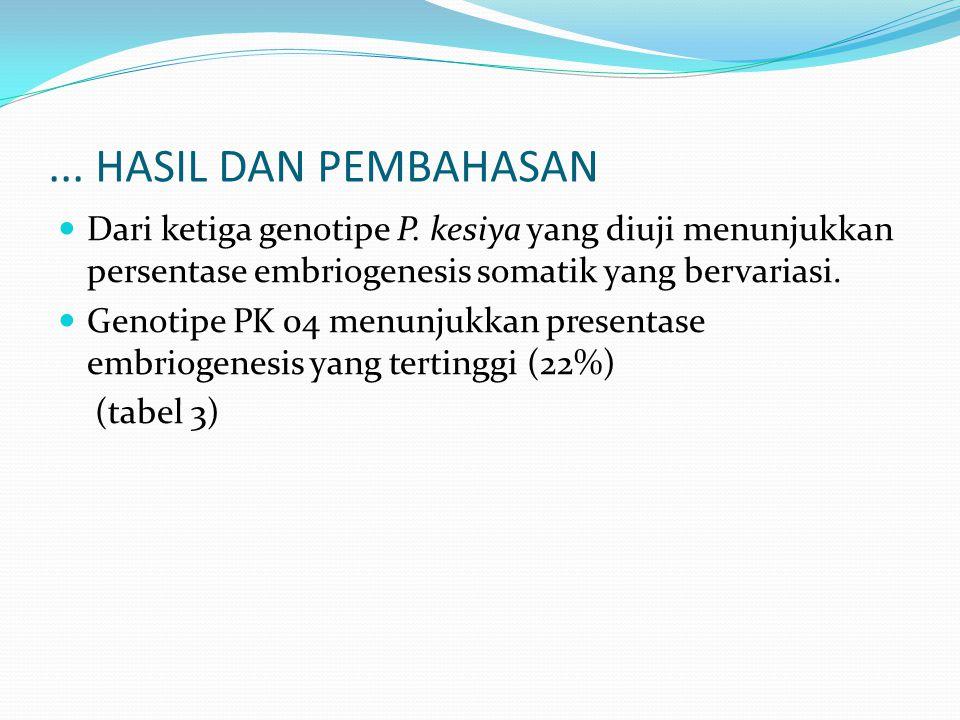 Dari ketiga genotipe P. kesiya yang diuji menunjukkan persentase embriogenesis somatik yang bervariasi. Genotipe PK 04 menunjukkan presentase embrioge