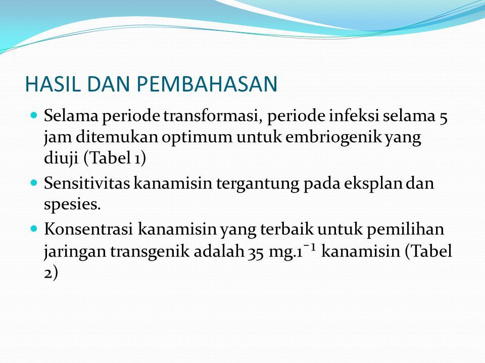 HASIL DAN PEMBAHASAN Selama periode transformasi, periode infeksi selama 5 jam ditemukan optimum untuk embriogenik yang diuji (Tabel 1) Sensitivitas k