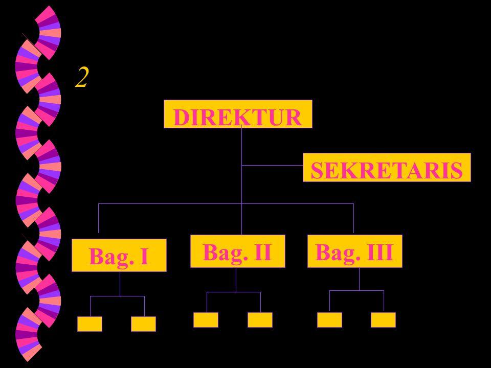 Bagan Struktur Organisasi DIREKTUR SEKRETARIS Bag. I Bag. II Bag. III 1