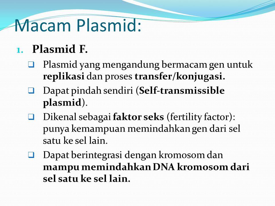 Macam Plasmid: 1. Plasmid F.  Plasmid yang mengandung bermacam gen untuk replikasi dan proses transfer/konjugasi.  Dapat pindah sendiri (Self-transm