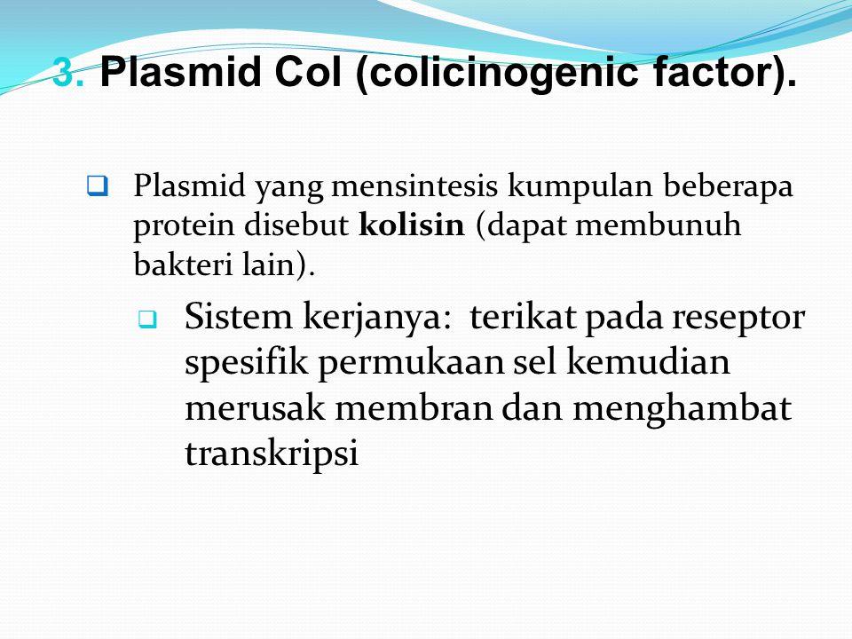 3. Plasmid Col (colicinogenic factor).  Plasmid yang mensintesis kumpulan beberapa protein disebut kolisin (dapat membunuh bakteri lain).  Sistem ke