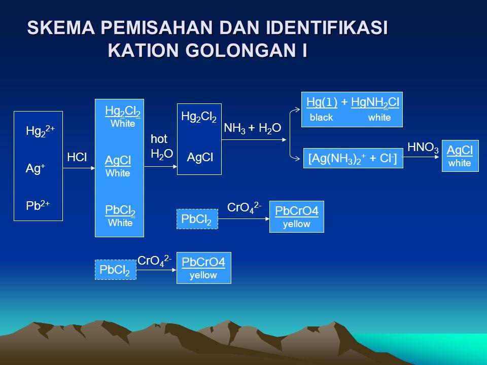 SKEMA PEMISAHAN DAN IDENTIFIKASI KATION GOLONGAN I Hg 2 2+ Ag + Pb 2+ Hg 2 Cl 2 White AgCl White PbCl 2 White HCl Hg 2 Cl 2 AgCl hot H 2 O NH 3 + H 2 O Hg(l) + HgNH 2 Cl black white [Ag(NH 3 ) 2 + + Cl - ] HNO 3 AgCl white PbCl 2 CrO 4 2- PbCrO4 yellow PbCl 2 CrO 4 2- PbCrO4 yellow