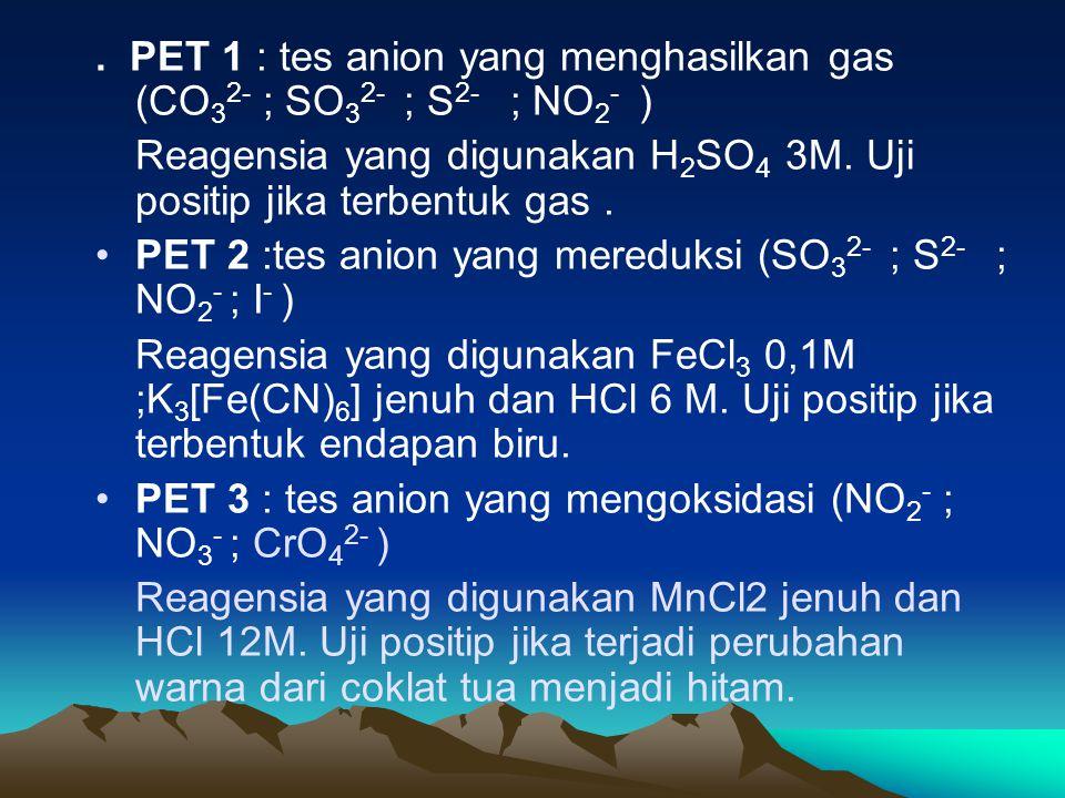 . PET 1 : tes anion yang menghasilkan gas (CO 3 2- ; SO 3 2- ; S 2- ; NO 2 - ) Reagensia yang digunakan H 2 SO 4 3M. Uji positip jika terbentuk gas. P