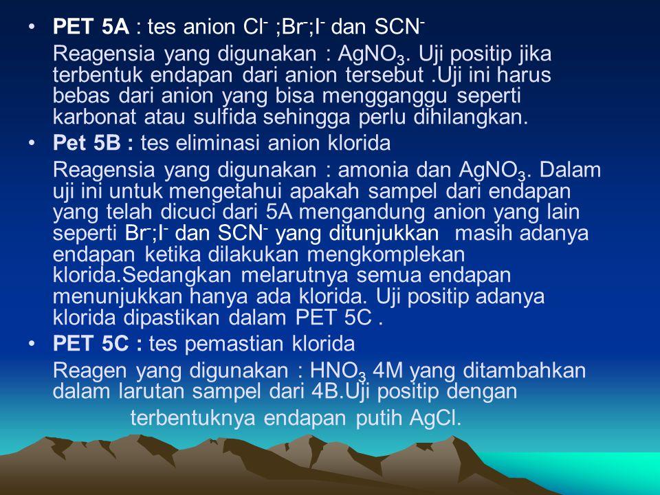 PET 5A : tes anion Cl - ;Br - ;I - dan SCN - Reagensia yang digunakan : AgNO 3. Uji positip jika terbentuk endapan dari anion tersebut.Uji ini harus b