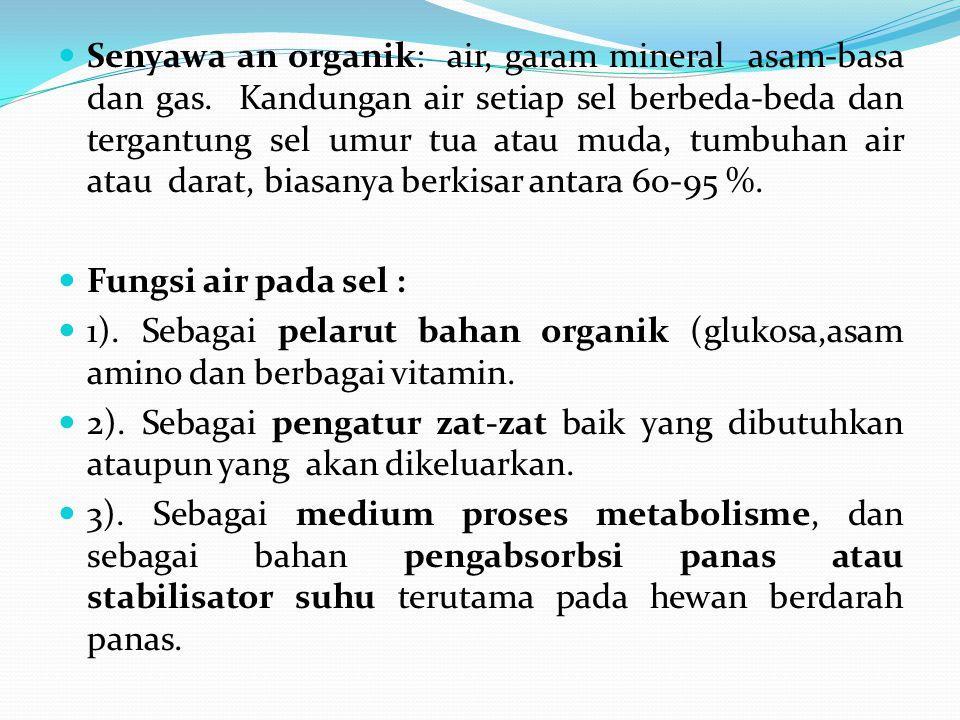 Senyawa an organik: air, garam mineral asam-basa dan gas. Kandungan air setiap sel berbeda-beda dan tergantung sel umur tua atau muda, tumbuhan air at