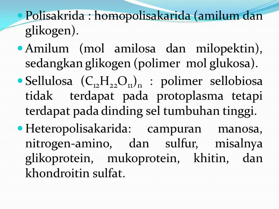 Polisakrida : homopolisakarida (amilum dan glikogen). Amilum (mol amilosa dan milopektin), sedangkan glikogen (polimer mol glukosa). Sellulosa (C 12 H