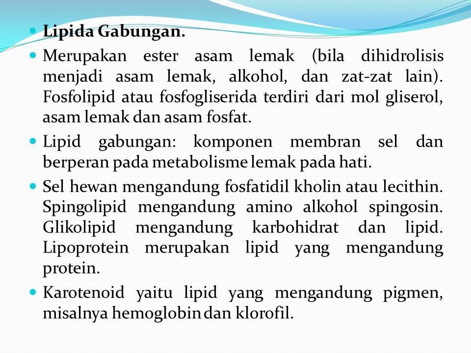 Lipida Gabungan. Merupakan ester asam lemak (bila dihidrolisis menjadi asam lemak, alkohol, dan zat-zat lain). Fosfolipid atau fosfogliserida terdiri