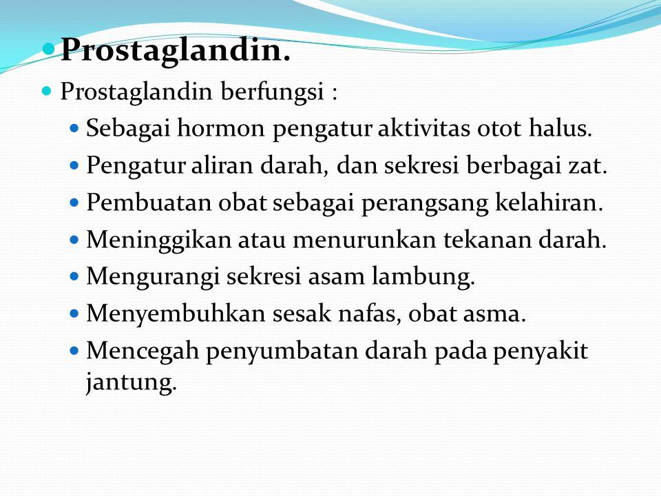 Prostaglandin. Prostaglandin berfungsi : Sebagai hormon pengatur aktivitas otot halus. Pengatur aliran darah, dan sekresi berbagai zat. Pembuatan obat