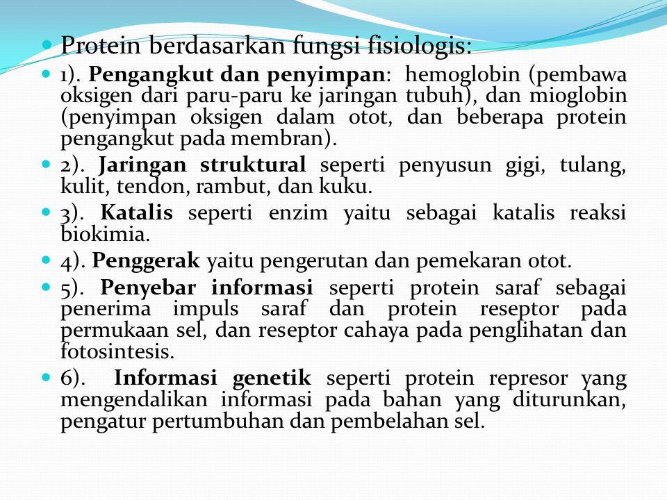Protein berdasarkan fungsi fisiologis: 1). Pengangkut dan penyimpan: hemoglobin (pembawa oksigen dari paru-paru ke jaringan tubuh), dan mioglobin (pen