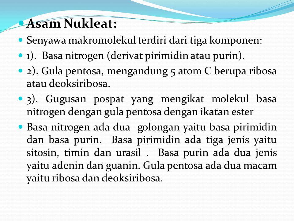 Asam Nukleat: Senyawa makromolekul terdiri dari tiga komponen: 1). Basa nitrogen (derivat pirimidin atau purin). 2). Gula pentosa, mengandung 5 atom C