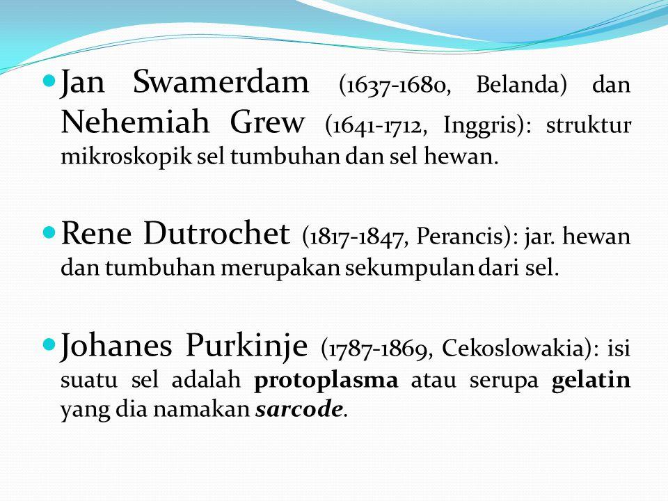 Jan Swamerdam (1637-1680, Belanda) dan Nehemiah Grew (1641-1712, Inggris): struktur mikroskopik sel tumbuhan dan sel hewan. Rene Dutrochet (1817-1847,