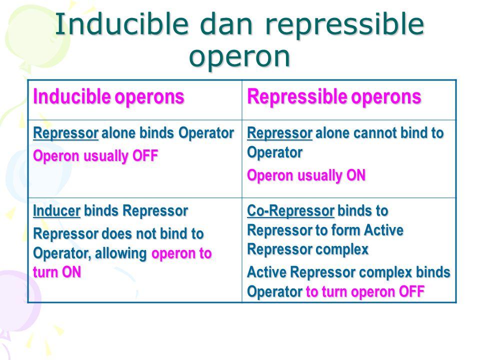 Inducible dan repressible operon Inducible operons Repressible operons Repressor alone binds Operator Operon usually OFF Repressor alone cannot bind t