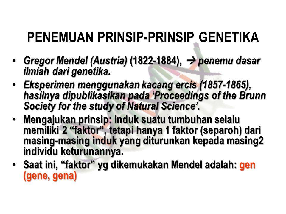 PENEMUAN PRINSIP-PRINSIP GENETIKA Gregor Mendel (Austria) (1822-1884),  penemu dasar ilmiah dari genetika. Gregor Mendel (Austria) (1822-1884),  pen