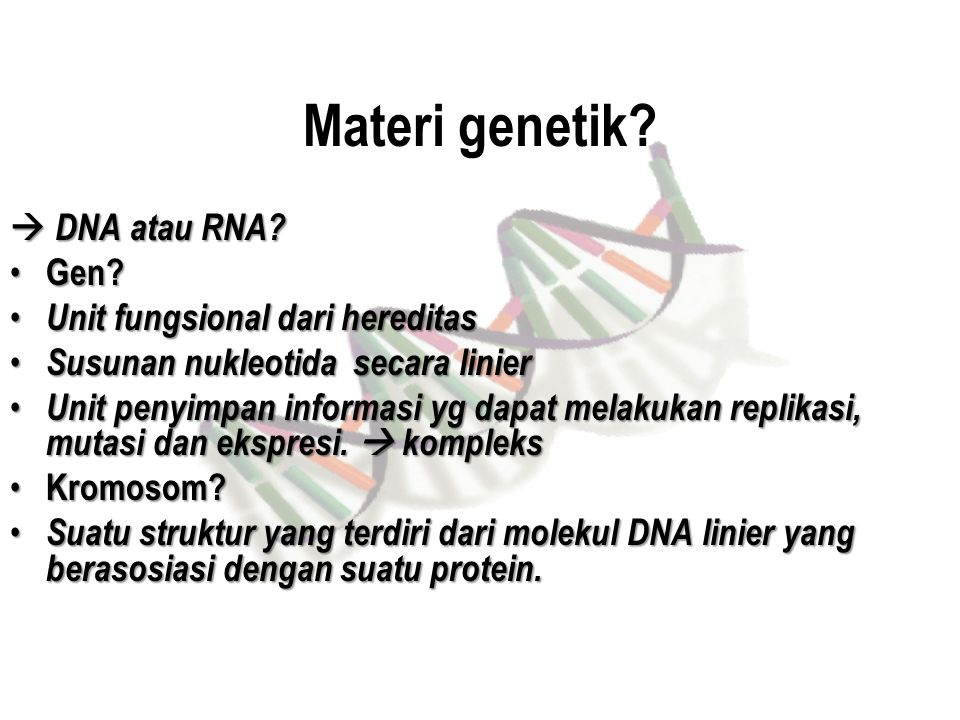 Materi genetik?  DNA atau RNA? Gen? Gen? Unit fungsional dari hereditas Unit fungsional dari hereditas Susunan nukleotida secara linier Susunan nukle