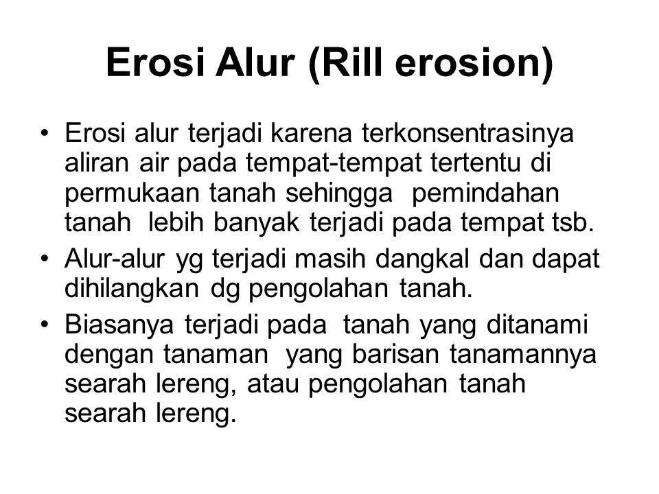Erosi Alur (Rill erosion) Erosi alur terjadi karena terkonsentrasinya aliran air pada tempat-tempat tertentu di permukaan tanah sehingga pemindahan tanah lebih banyak terjadi pada tempat tsb.