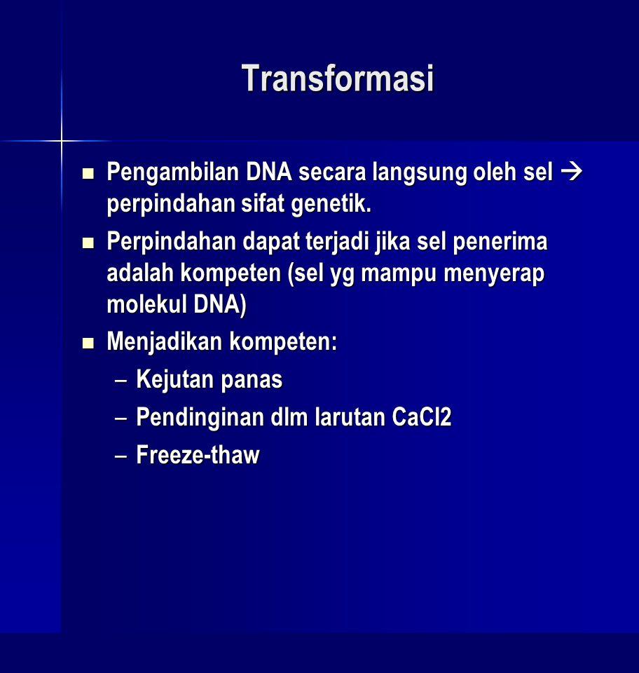 Transformasi Pengambilan DNA secara langsung oleh sel  perpindahan sifat genetik. Pengambilan DNA secara langsung oleh sel  perpindahan sifat geneti