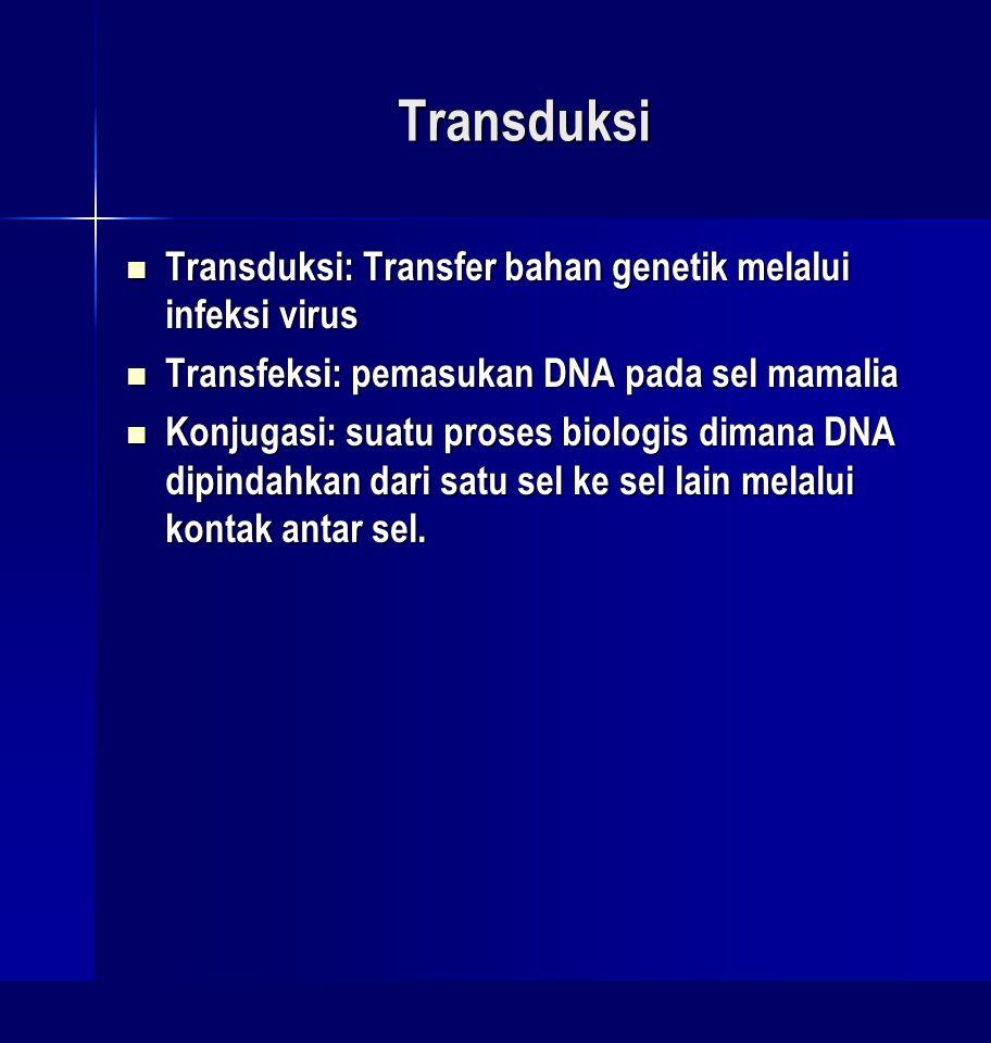 Transduksi Transduksi: Transfer bahan genetik melalui infeksi virus Transduksi: Transfer bahan genetik melalui infeksi virus Transfeksi: pemasukan DNA