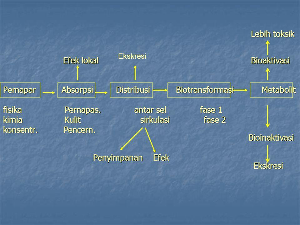 Lebih toksik Lebih toksik Efek lokal Bioaktivasi Pemapar Absorpsi Distribusi Biotransformasi Metabolit fisika Pernapas.