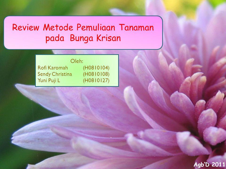 Review Metode Pemuliaan Tanaman pada Bunga Krisan Oleh: Rofi Karomah (H0810104) Sendy Christina(H0810108) Yuni Puji L(H0810127) Agb'D 2011