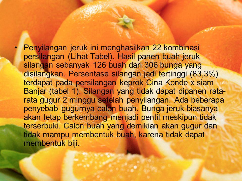 Penyilangan jeruk ini menghasilkan 22 kombinasi persilangan (Lihat Tabel). Hasil panen buah jeruk silangan sebanyak 126 buah dari 306 bunga yang disil