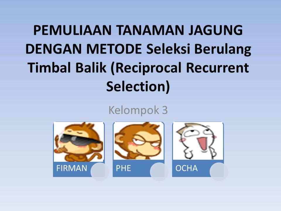 PEMULIAAN TANAMAN JAGUNG DENGAN METODE Seleksi Berulang Timbal Balik (Reciprocal Recurrent Selection) Kelompok 3 FIRMANPHEOCHA