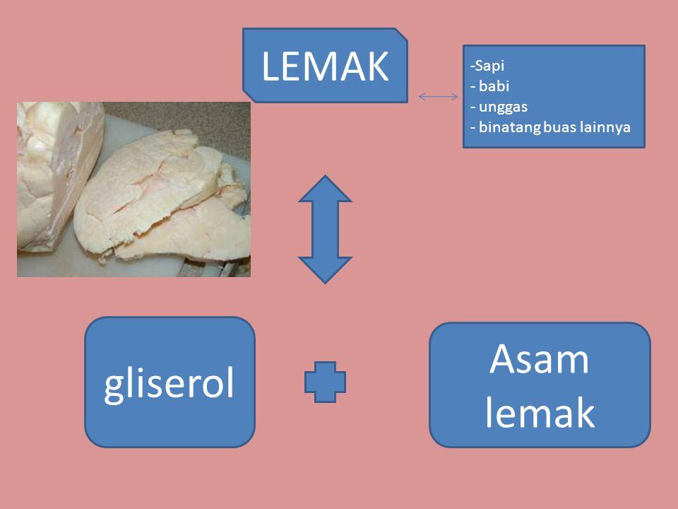 LEMAK gliserol Asam lemak -Sapi - babi - unggas - binatang buas lainnya