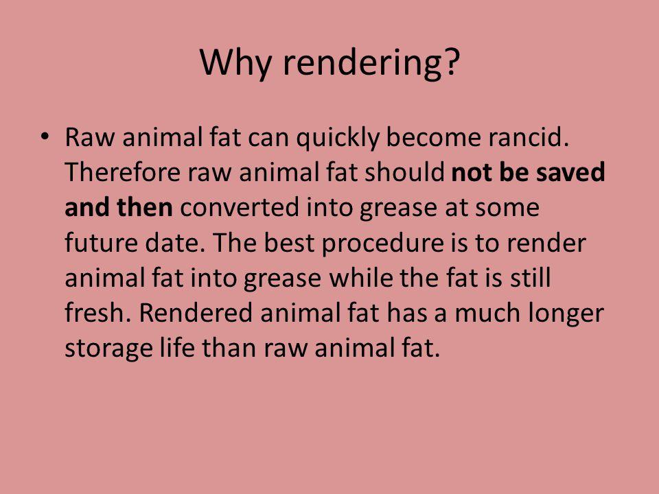 Rendering: Adalah proses yang mengubah jaringan ampas (jaringan tidak berguna) hewan menjadi materi yang stabil atau dari bahan yang tidak berguna menjadi bahan yang berguna.