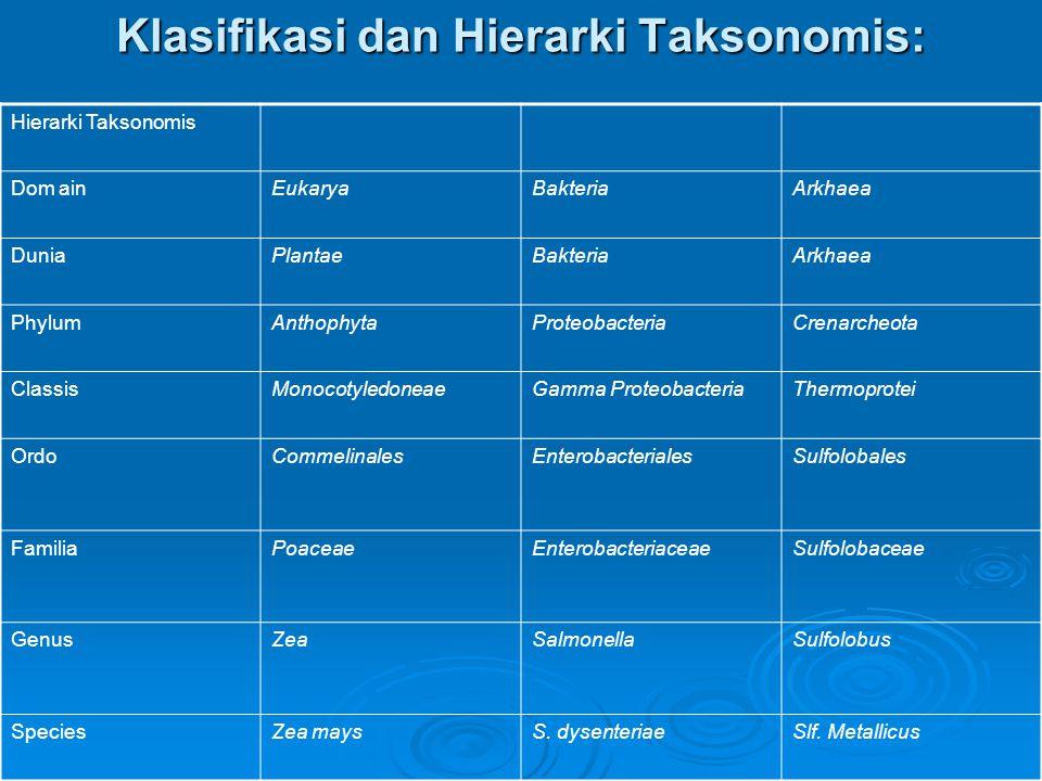 Klasifikasi dan Hierarki Taksonomis: Hierarki Taksonomis Dom ainEukaryaBakteriaArkhaea DuniaPlantaeBakteriaArkhaea PhylumAnthophytaProteobacteriaCrena