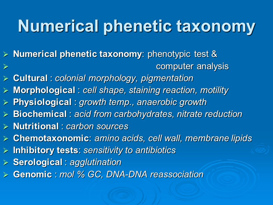 Numerical phenetic taxonomy  Numerical phenetic taxonomy: phenotypic test &  computer analysis  Cultural : colonial morphology, pigmentation  Morp