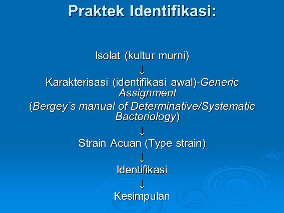Praktek Identifikasi: Isolat (kultur murni) ↓ Karakterisasi (identifikasi awal)-Generic Assignment (Bergey's manual of Determinative/Systematic Bacter