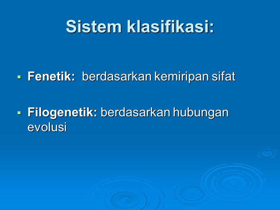 Sistem klasifikasi:  Fenetik: berdasarkan kemiripan sifat  Filogenetik: berdasarkan hubungan evolusi