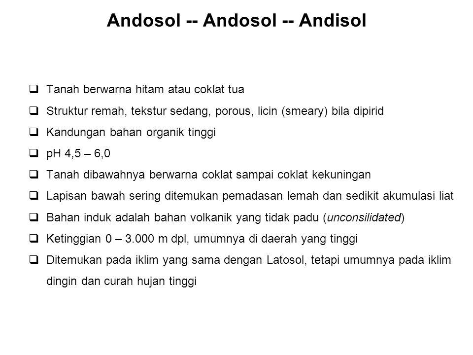 Andosol -- Andosol -- Andisol  Tanah berwarna hitam atau coklat tua  Struktur remah, tekstur sedang, porous, licin (smeary) bila dipirid  Kandungan