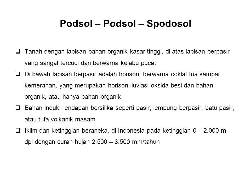 Podsol – Podsol – Spodosol  Tanah dengan lapisan bahan organik kasar tinggi, di atas lapisan berpasir yang sangat tercuci dan berwarna kelabu pucat 