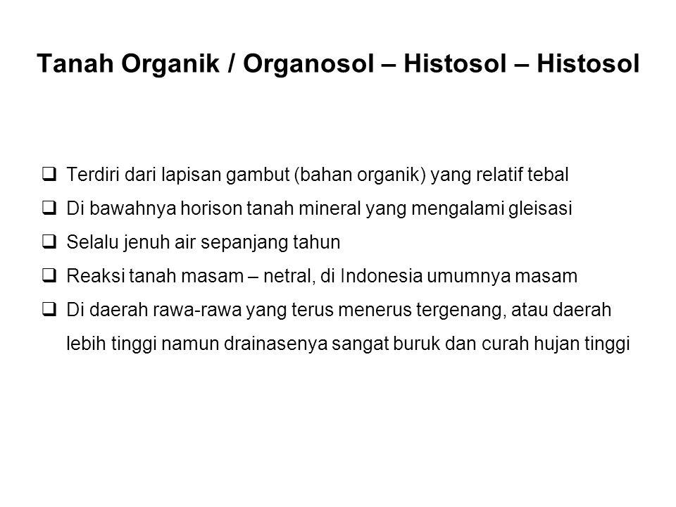 Tanah Organik / Organosol – Histosol – Histosol  Terdiri dari lapisan gambut (bahan organik) yang relatif tebal  Di bawahnya horison tanah mineral y