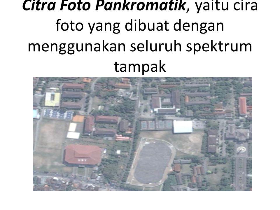 Citra Foto Pankromatik, yaitu cira foto yang dibuat dengan menggunakan seluruh spektrum tampak