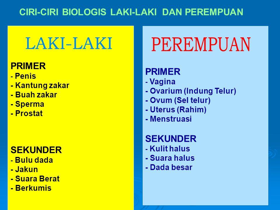 6 CIRI-CIRI BIOLOGIS LAKI-LAKI DAN PEREMPUAN PRIMER - Penis - Kantung zakar - Buah zakar - Sperma - Prostat SEKUNDER - Bulu dada - Jakun - Suara Berat