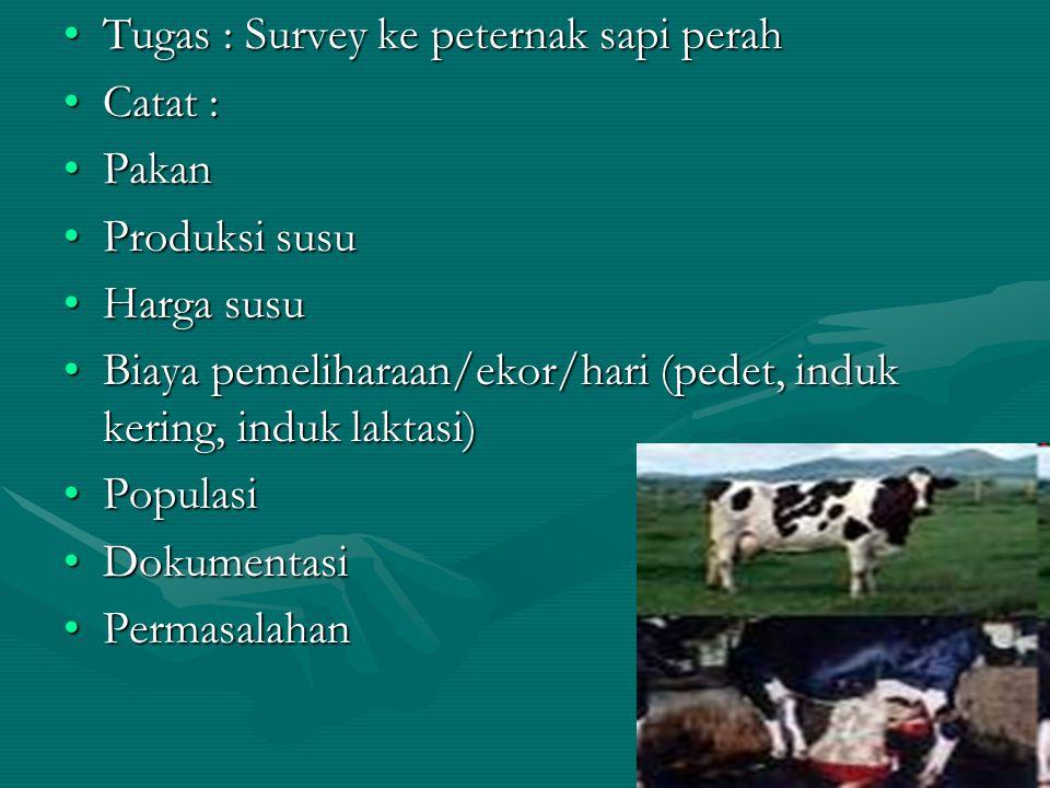 Tugas : Survey ke peternak sapi perahTugas : Survey ke peternak sapi perah Catat :Catat : PakanPakan Produksi susuProduksi susu Harga susuHarga susu B
