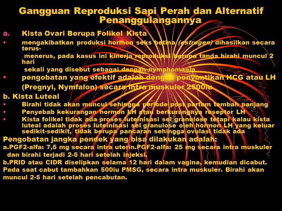 Gangguan Reproduksi Sapi Perah dan Alternatif Penanggulangannya a.Kista Ovari Berupa Folikel Kista mengakibatkan produksi hormon seks betina (estrogen