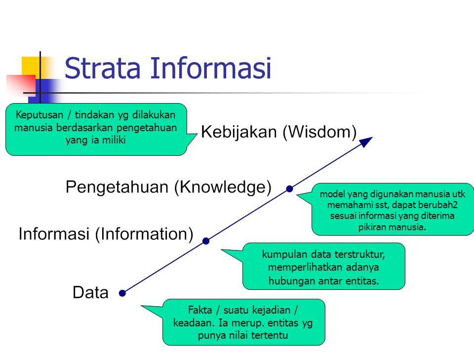 Strata Informasi kumpulan data terstruktur, memperlihatkan adanya hubungan antar entitas.