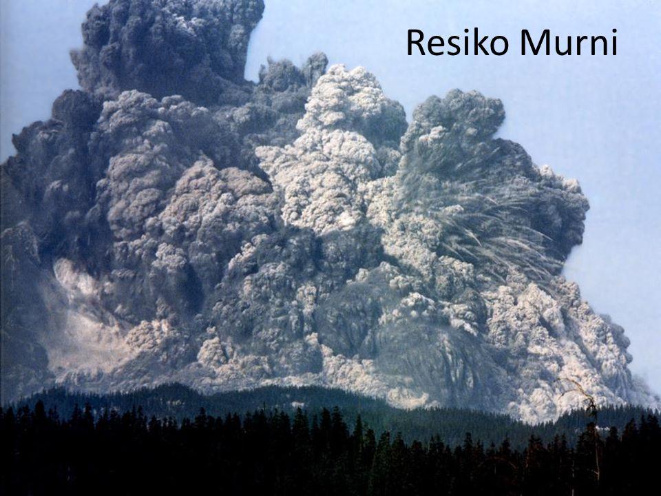 Resiko Murni
