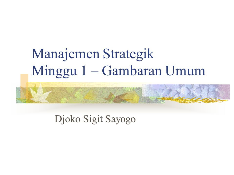 Manajemen Strategik Minggu 1 – Gambaran Umum Djoko Sigit Sayogo