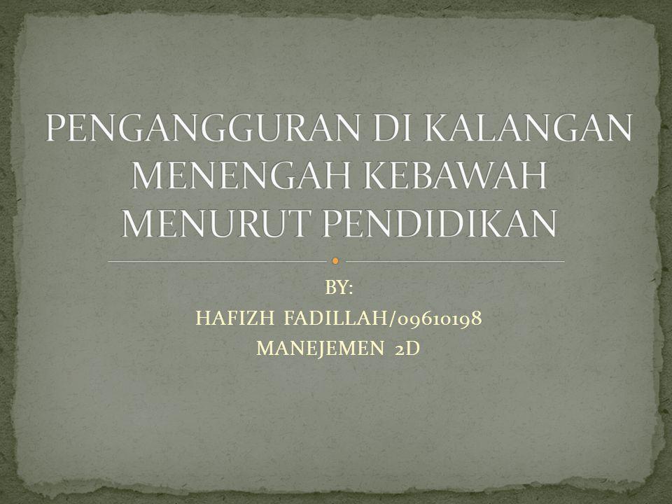 BY: HAFIZH FADILLAH/09610198 MANEJEMEN 2D