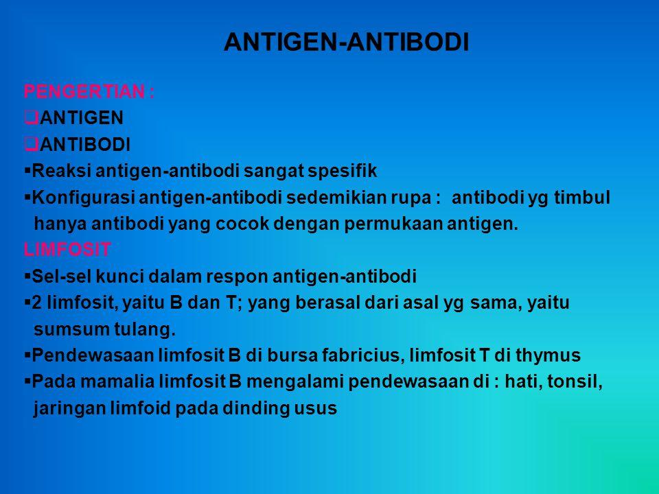 ANTIGEN-ANTIBODI PENGERTIAN :  ANTIGEN  ANTIBODI  Reaksi antigen-antibodi sangat spesifik  Konfigurasi antigen-antibodi sedemikian rupa : antibodi