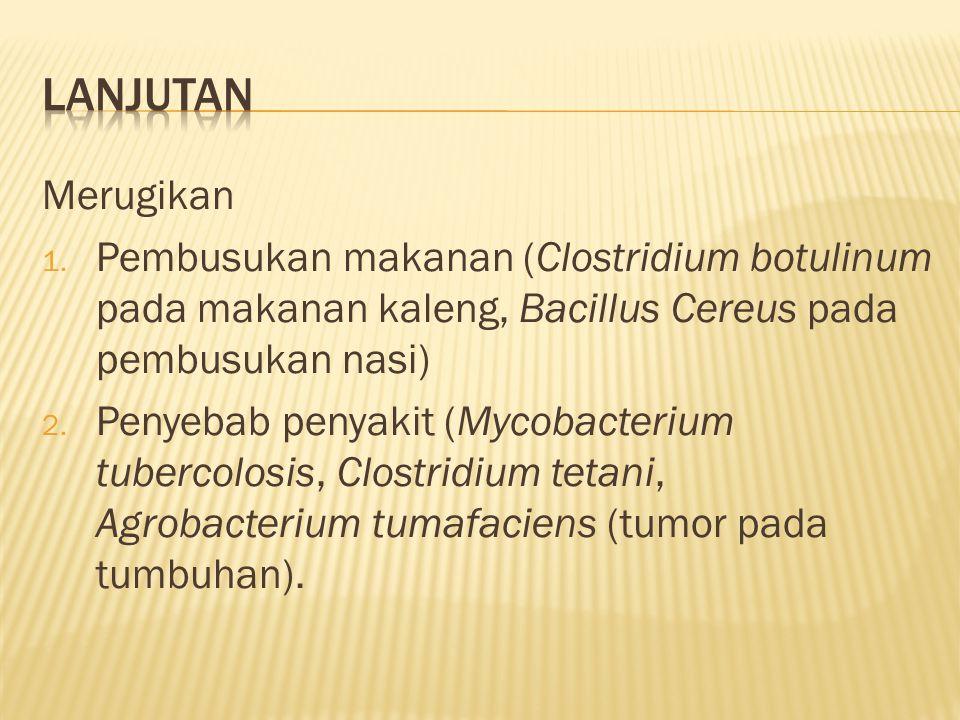 Merugikan 1. Pembusukan makanan (Clostridium botulinum pada makanan kaleng, Bacillus Cereus pada pembusukan nasi) 2. Penyebab penyakit (Mycobacterium