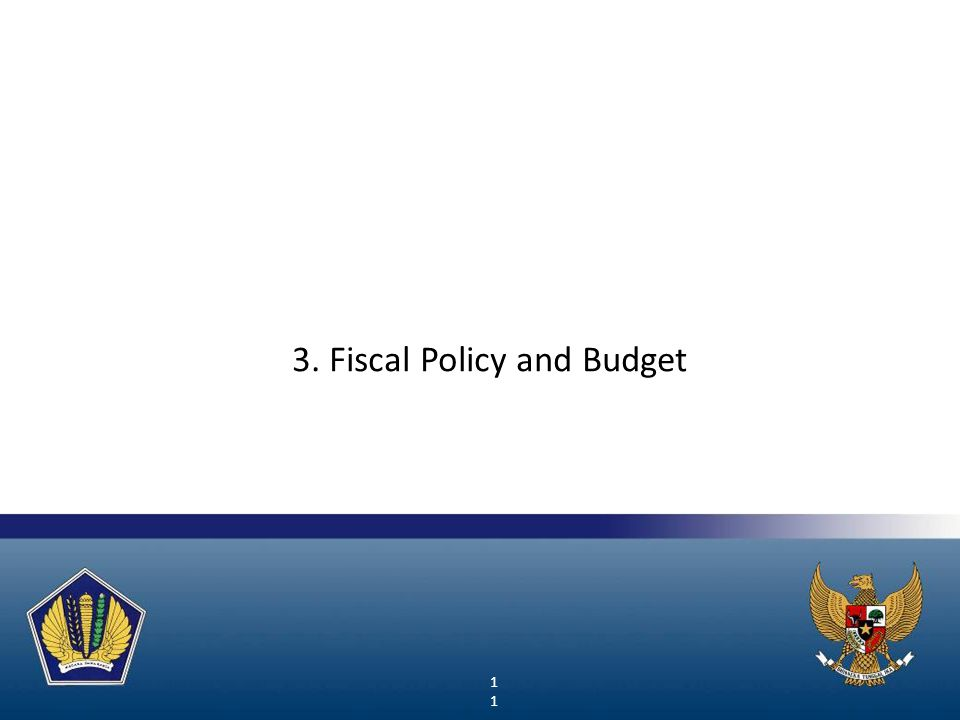 11 3. Fiscal Policy and Budget