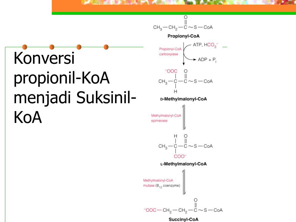  -Oksidasi Terjadi untuk memutuskan 1 atom C dari asam lemak, misal asam fitanat yang berasal dari fitol, komponen dari khlorofil Refsum's disease Jalur oksidasi