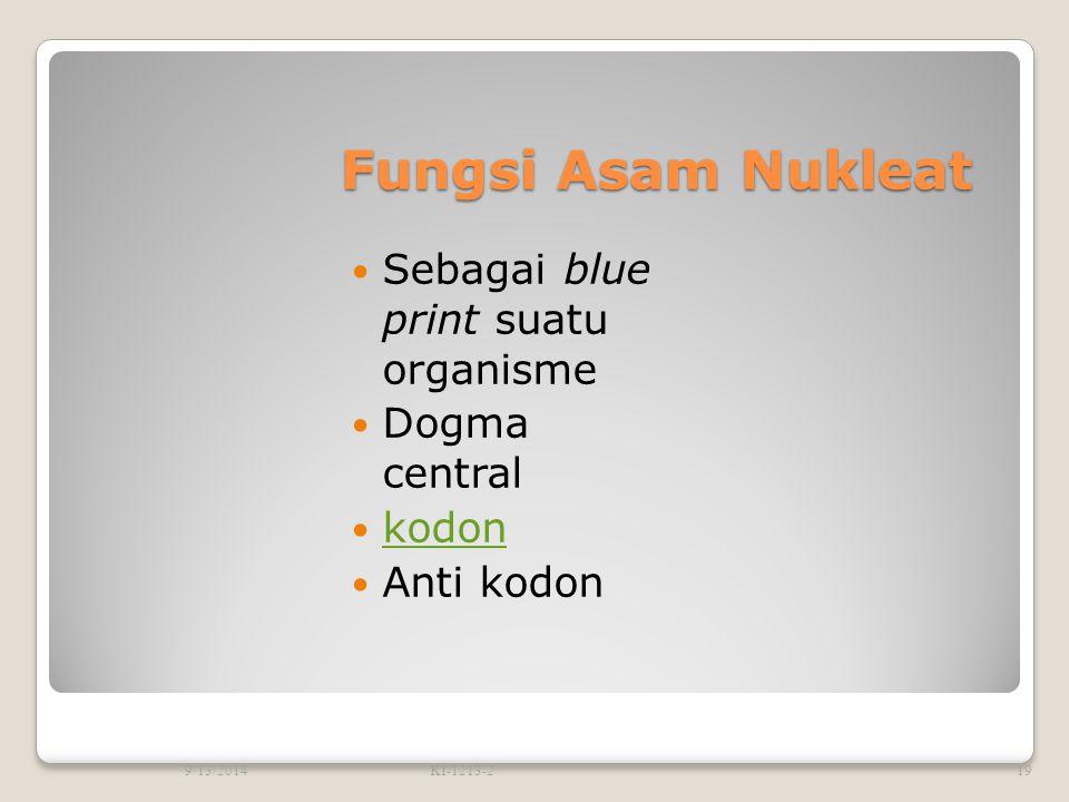 Fungsi Asam Nukleat Sebagai blue print suatu organisme Dogma central kodon Anti kodon 9/13/2014KI-1213-219